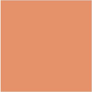 rond_oranje